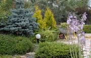 Профессиональный уход за Вашим садом