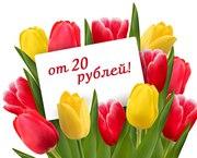 Тюльпаны оптом и мелким оптом