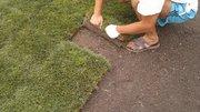 Рулонный газон под ключ или все включено
