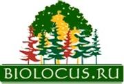 Биолокус – питомник саженцев деревьев и растений,  продажа,  доставка и