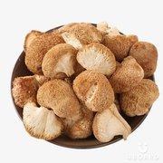 Продажа лечебных грибов: шиитаке,  чага,  мухомор красный,  и др.